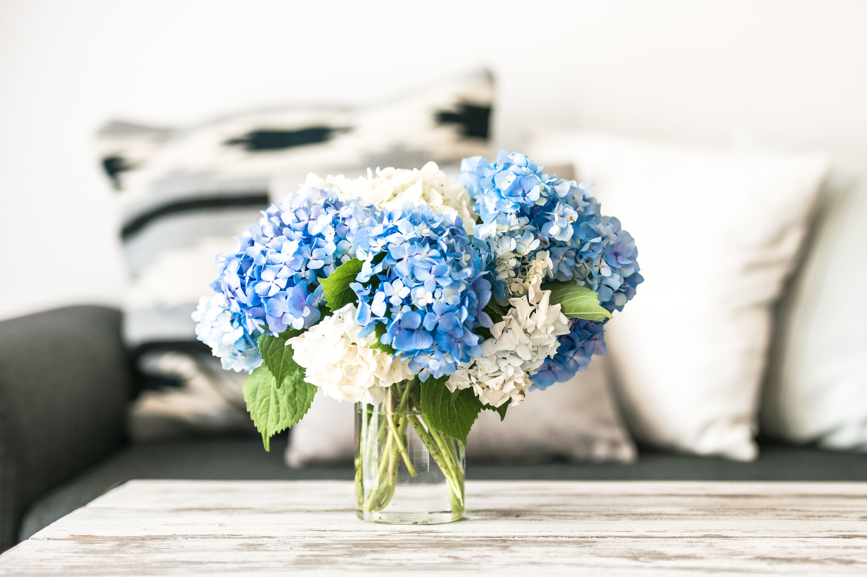Having fresh flowers in your home can help ease your anxiety, according to science