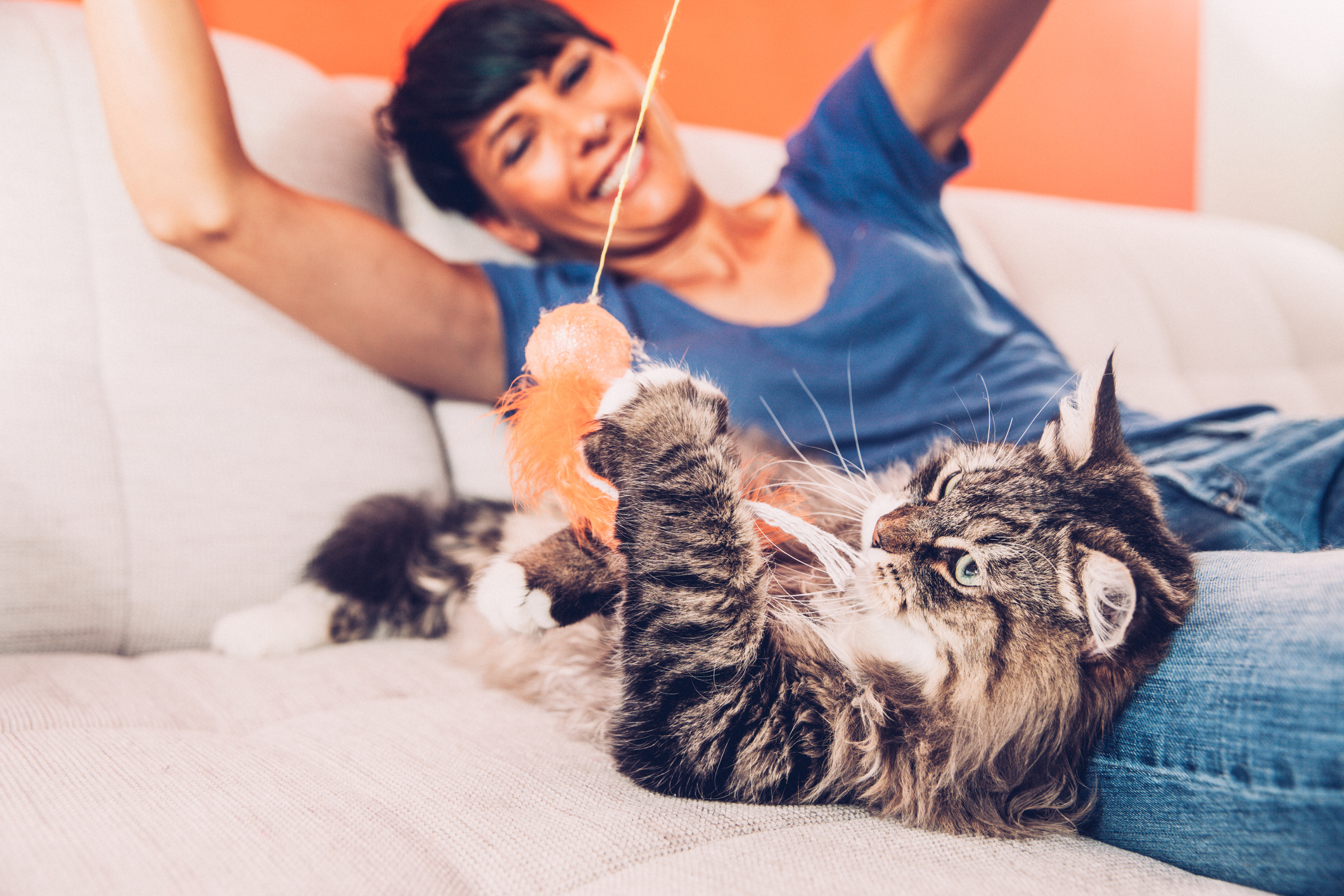Being a cat lady is good for your health, according to science