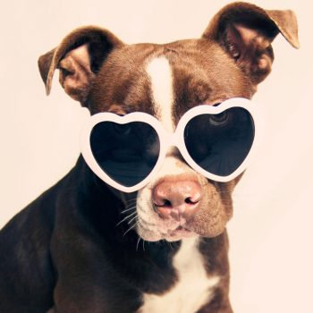 13 heart-shaped sunglasses that'll make you toss your teeny-tiny frames goodbye