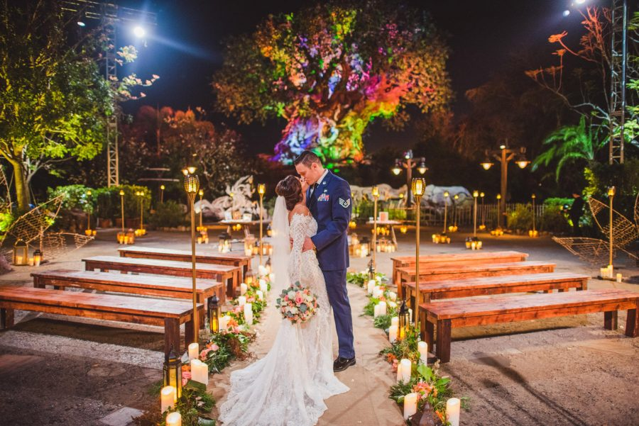 You can now get married under the Tree of Life at Disney World, and we're hoping animals are invited, too