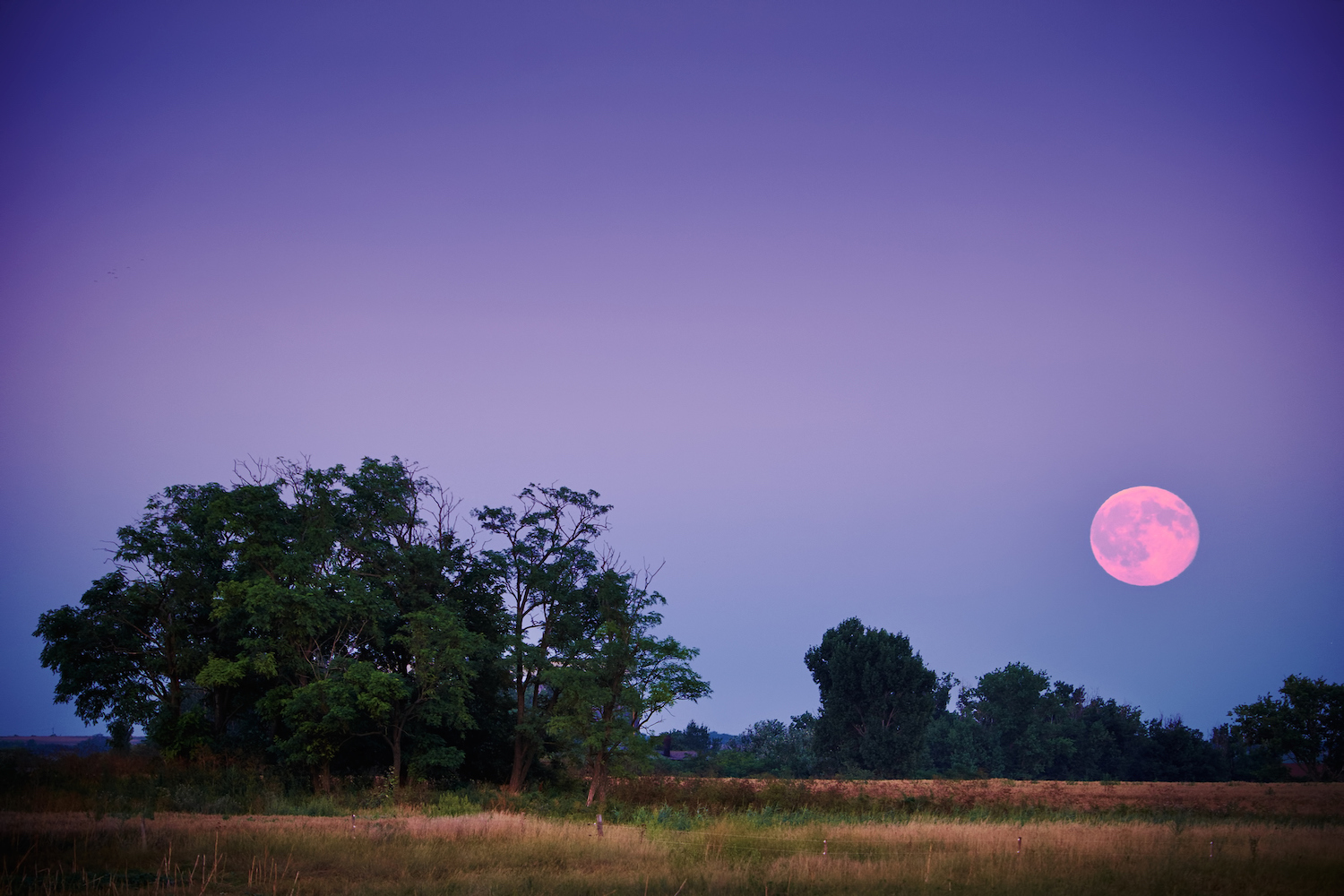 This week's full moon will bring a lot of necessary closure—here's how it'll affect your zodiac sign