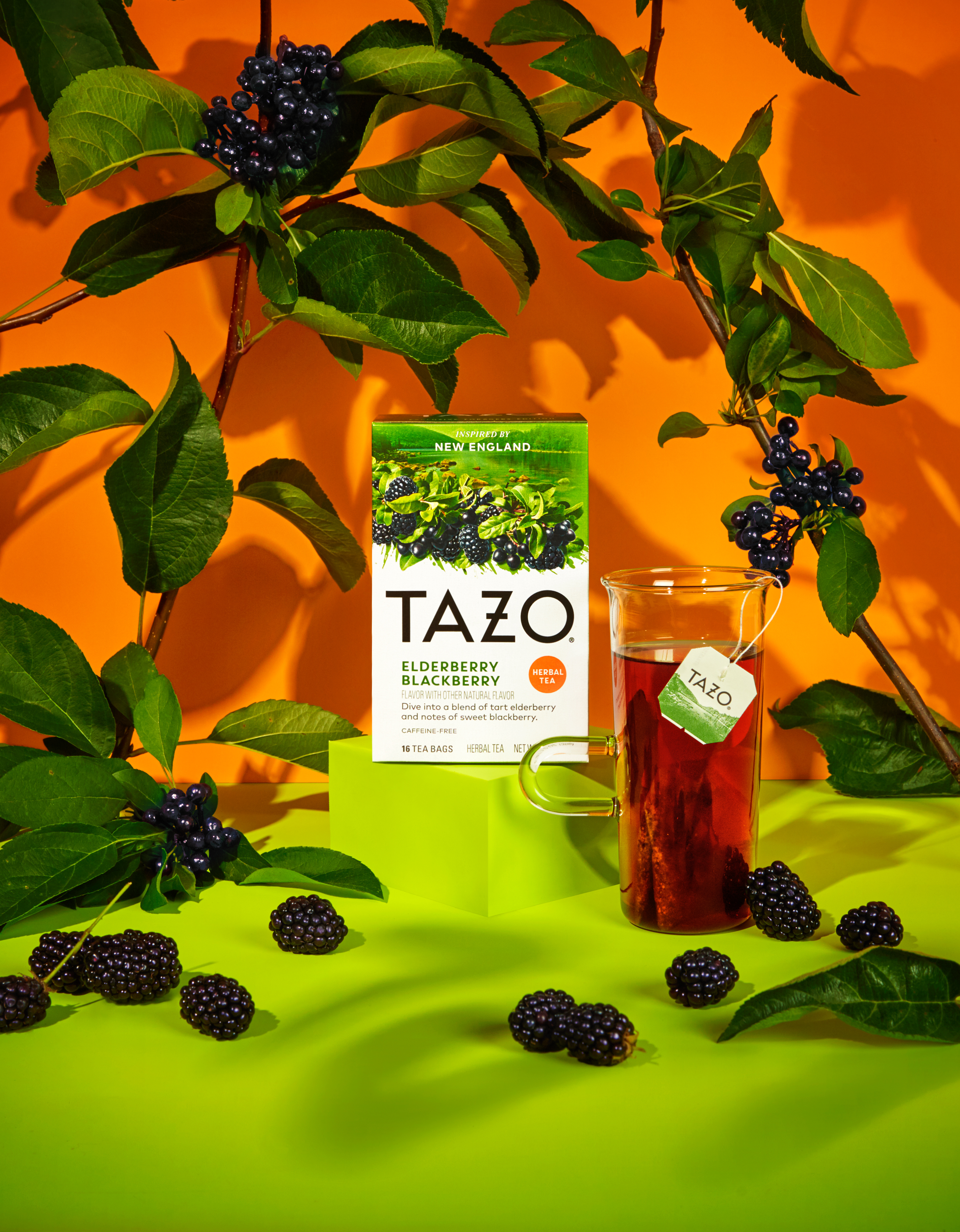 TAZO just released four new teas inspired by regions of the U.S.—can you guess what your home tastes like?