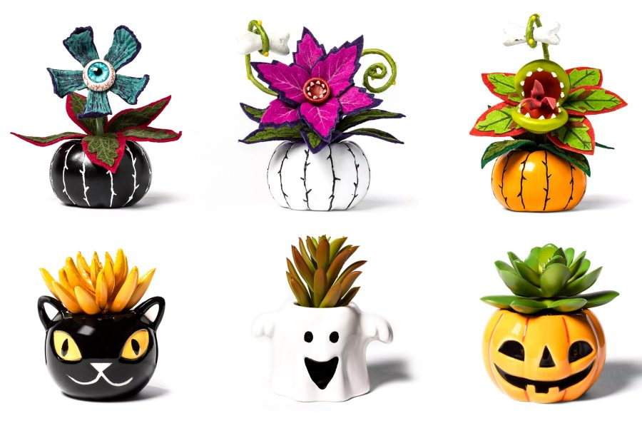 Target's Halloween-inspired succulents are as cute as they are creepy, so trick or treat yo'self