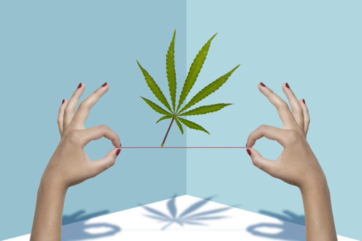 I used a hi-tech vibrator to learn how cannabis affects my orgasms