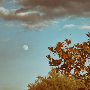 These Full Harvest Moon Rituals will get you ready for the season shift ahead